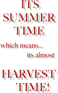 ITS
